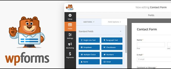 WpForms Lite WordPress Contact Form Plugin Error